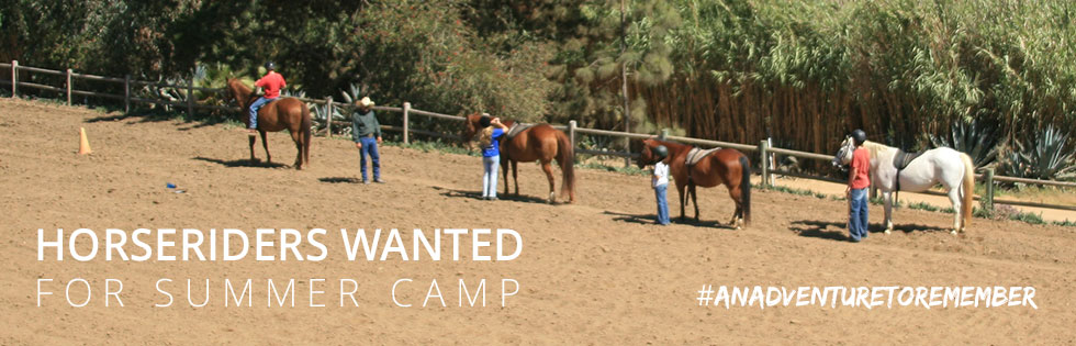 CCUSA Australia - Summer camp jobs, work and travel